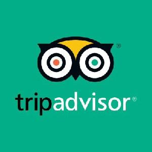 tripadvisor-100