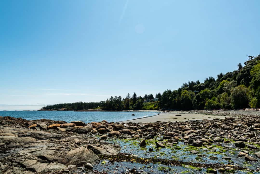 Low tide at Arbutus Cove, Victoria.